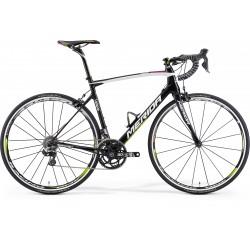 Merida Ride Team-E 2015